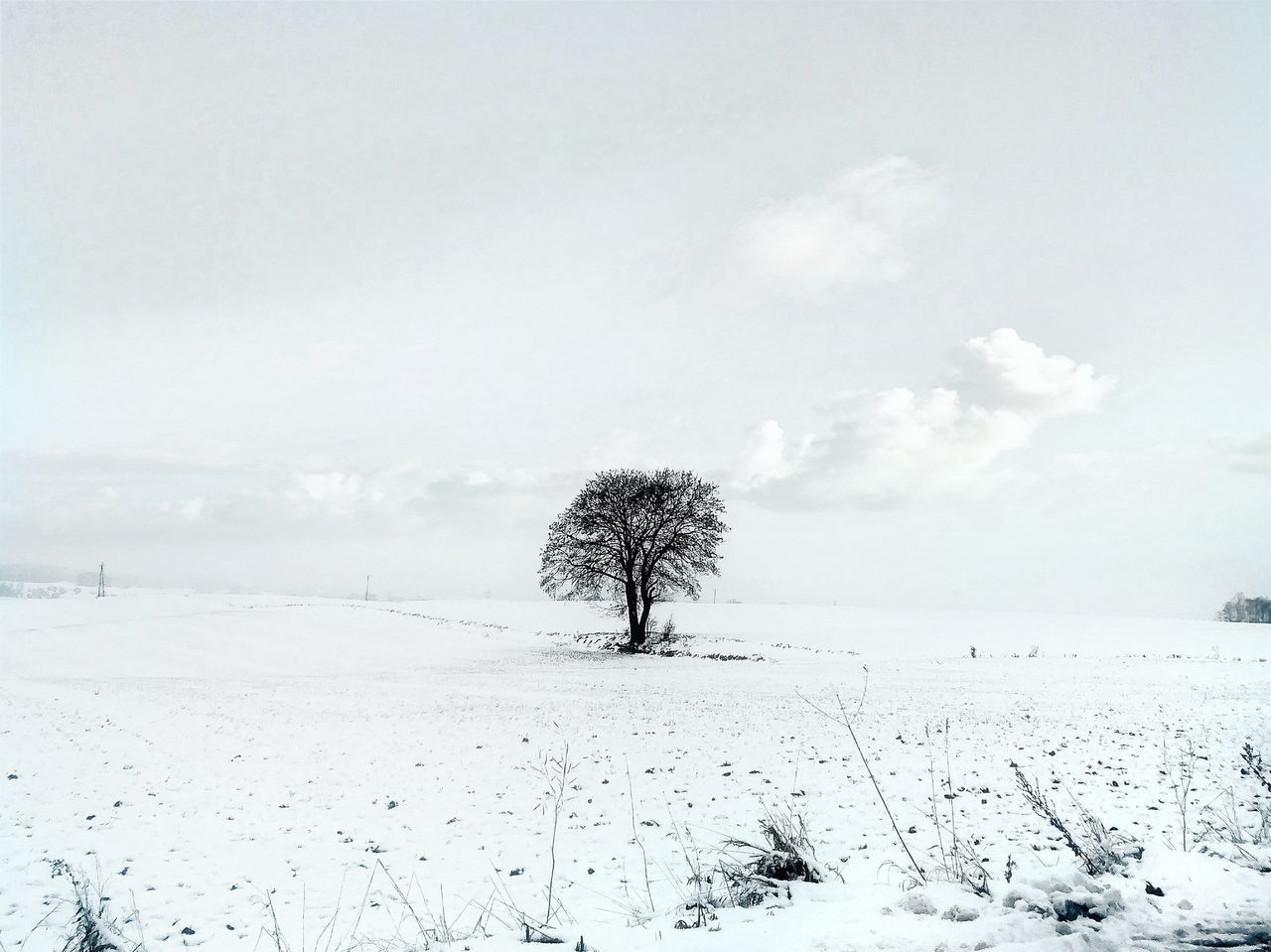 Nature No People Outdoors Science Landscape Day Sky Tree Polska Poland Warmia Drzewo Winter Zima