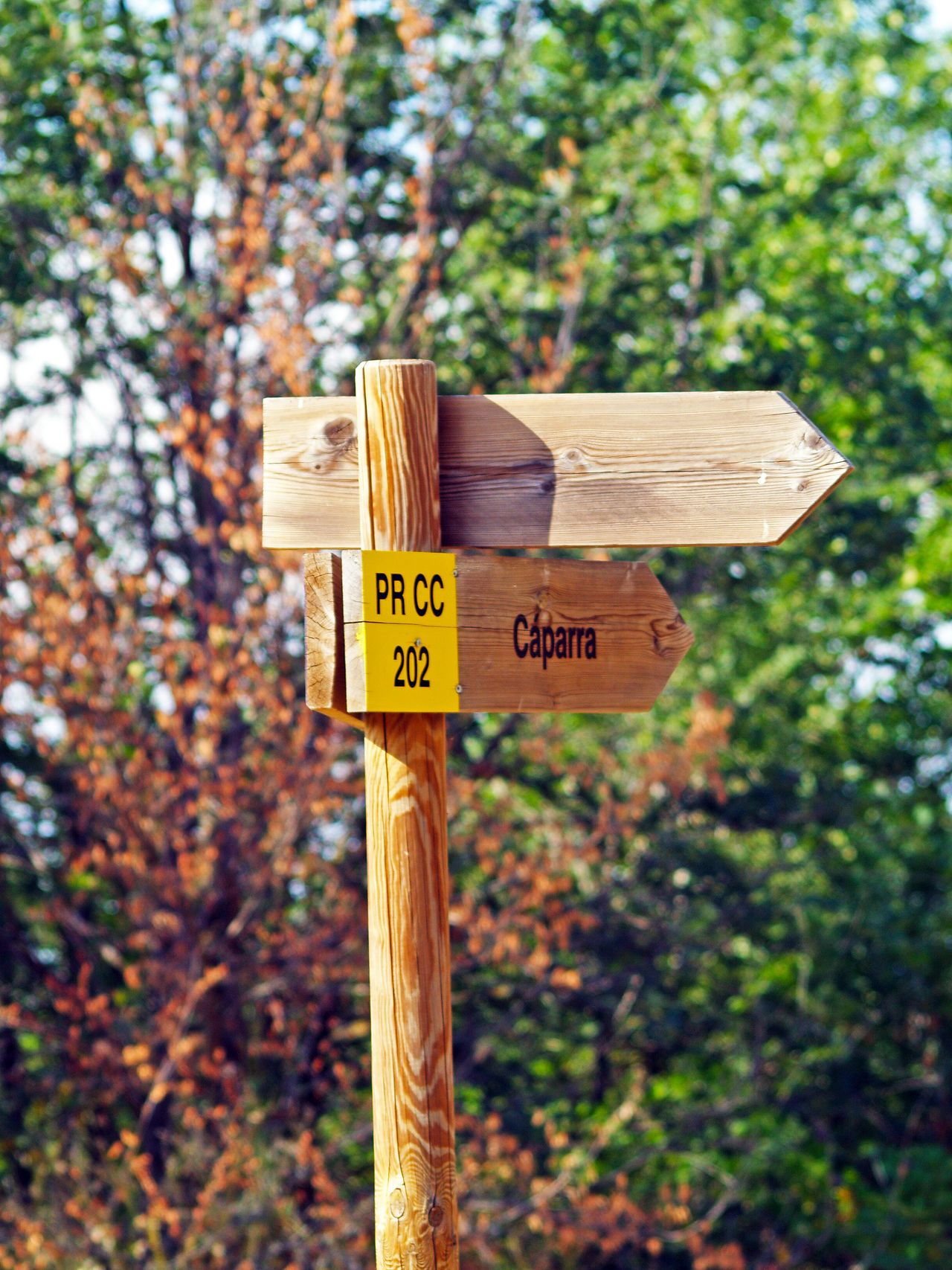 Wooden signs on a crossroad Close-up Communication Country Life Country Road Countryside Crossroads Day Ecological Ecology Environment Nature Nature No People Outdoors Rural Rural Scene Sign Signs Text Trail Tree Trekking Wood Wooden Wooden Post
