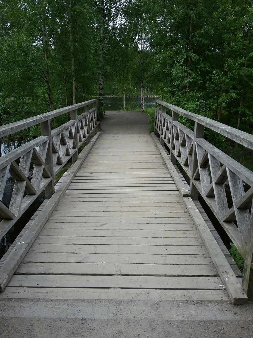 In the park. Railing The Way Forward Tree Bridge - Man Made Structure Outdoors Footbridge Day No People Nature Sky Finland Vacations Beauty In Nature Joensuu
