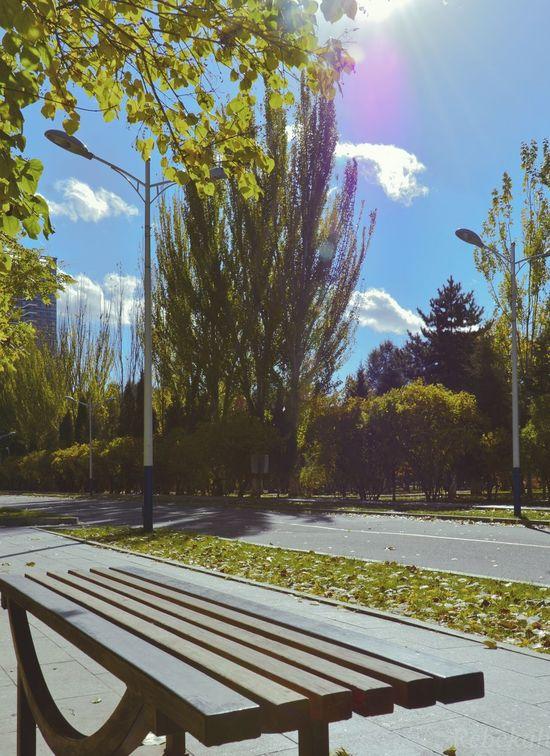 Sunshine ☀ University Campus 校园风景 🍂🍃 Easy Time