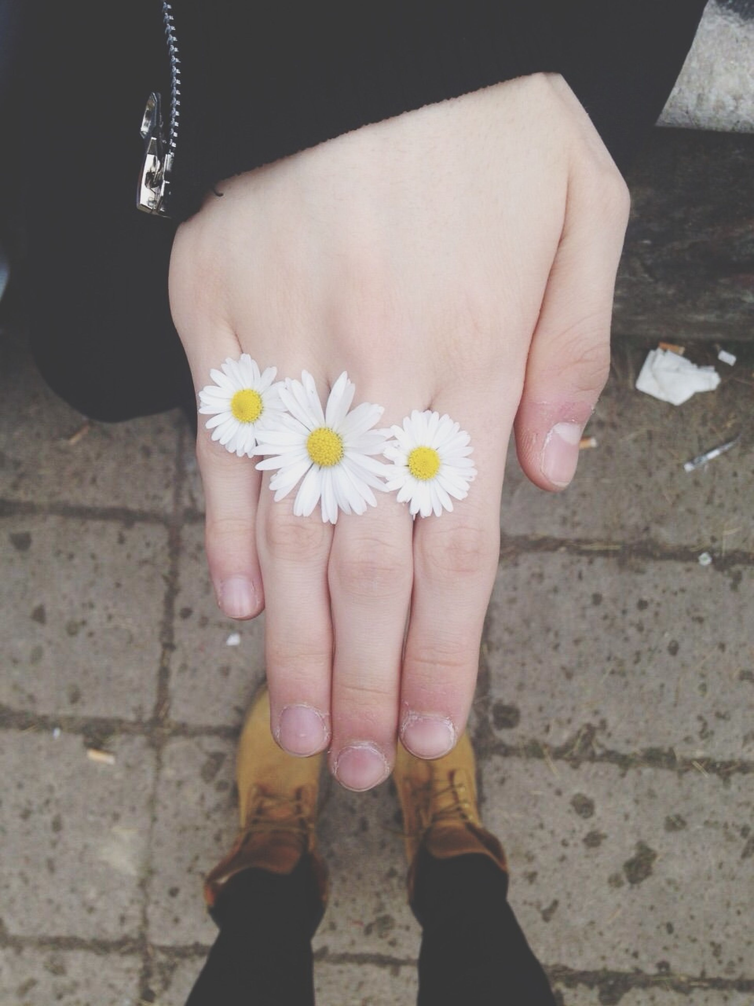 flower, person, holding, low section, lifestyles, part of, petal, personal perspective, fragility, flower head, leisure activity, white color, freshness, human foot, human finger