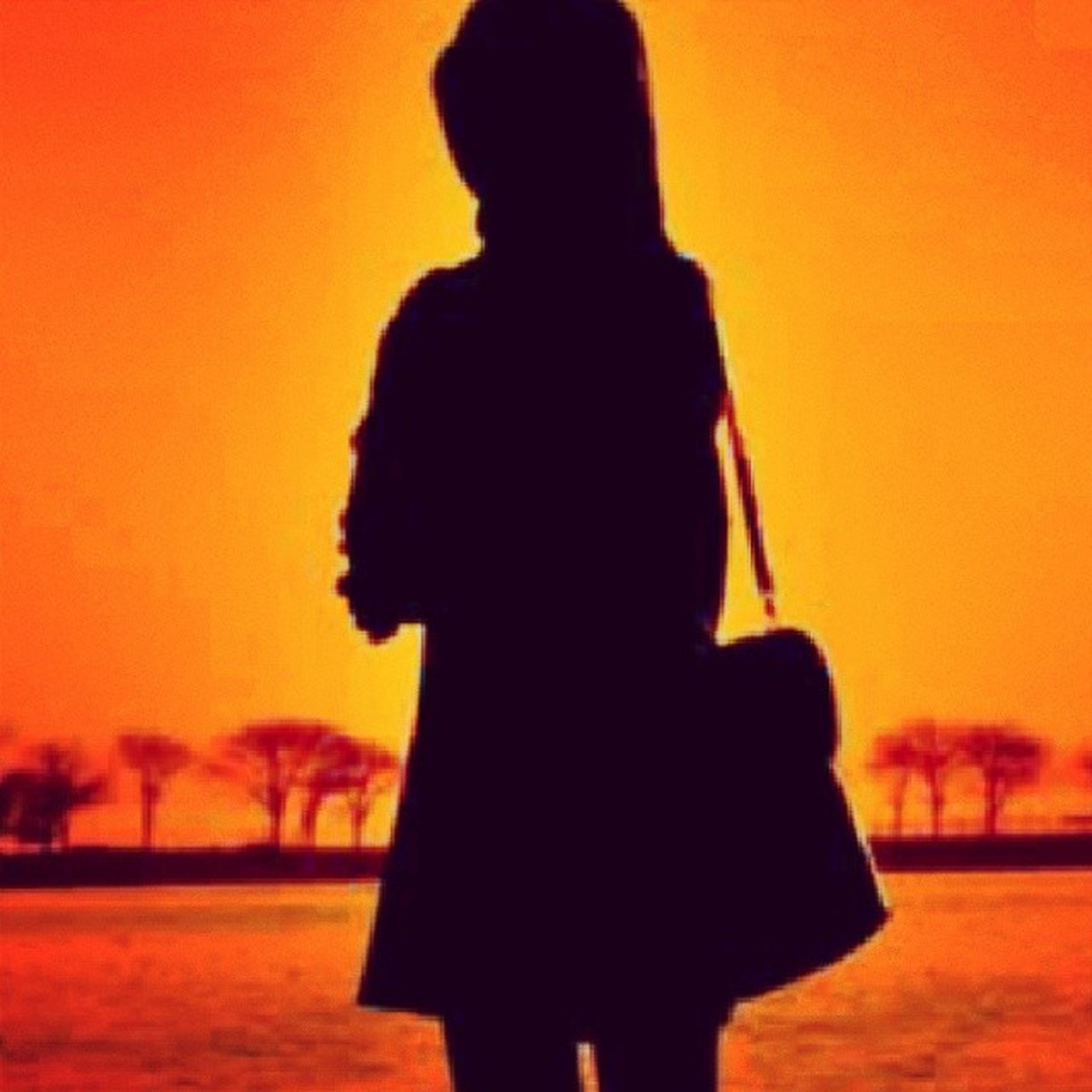 sunset, silhouette, orange color, lifestyles, leisure activity, standing, person, rear view, men, focus on foreground, three quarter length, field, holding, nature, waist up, clear sky, side view, beauty in nature