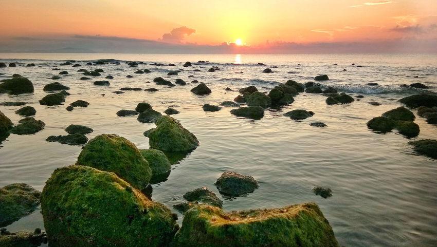 Sea Sun Beach Horizon Over Water Landscape Nature Outdoors Sunrise Rock - Object No People Mossy Rock