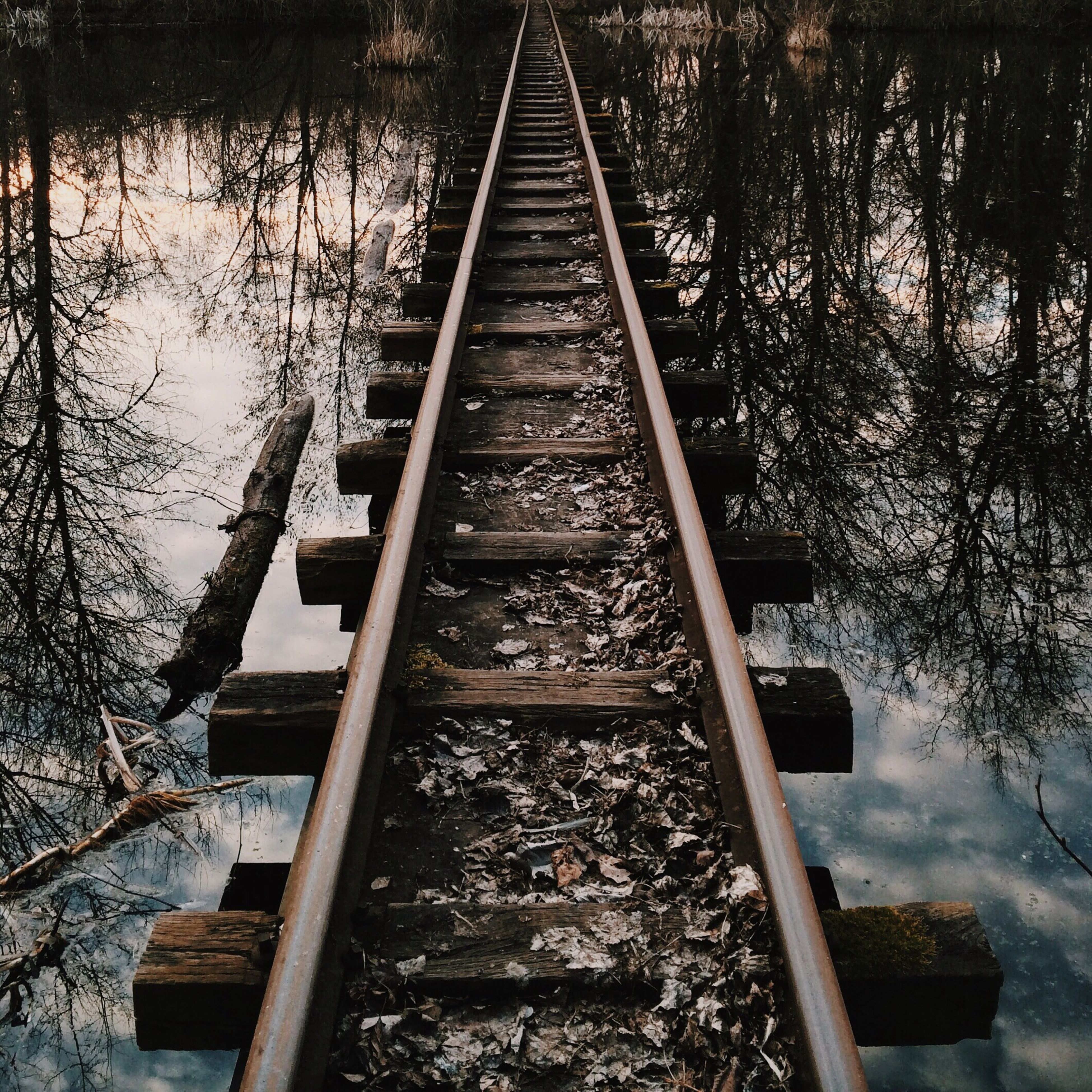 railroad track, transportation, rail transportation, water, connection, tree, high angle view, built structure, the way forward, diminishing perspective, metal, day, railing, bridge - man made structure, river, railway track, outdoors, architecture, footbridge, no people