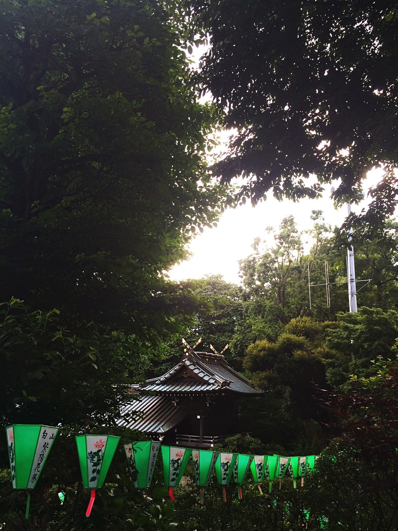 EyeEm Best Shots Japan Shrine