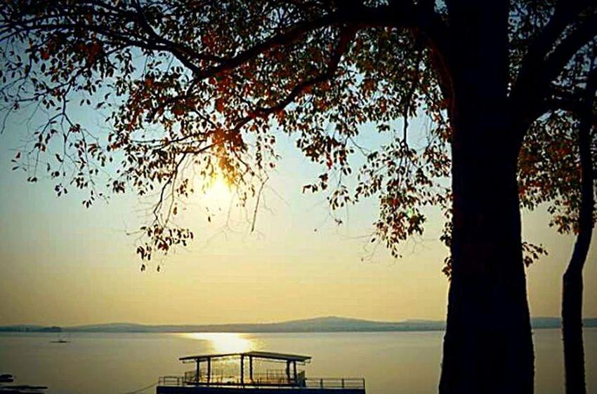 Taking Photos Beautiful Sunset♥♥Good Evening EyeEm THAILAND 2008 Oldpic <3 EyeEm Best Edits EyeEm Nature Lover Sweet♡ Photos Around You