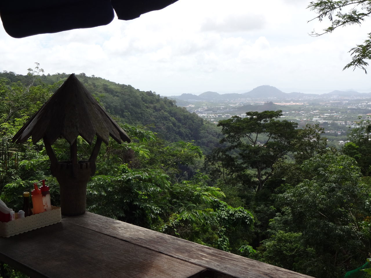 Landscape of rainforest and town