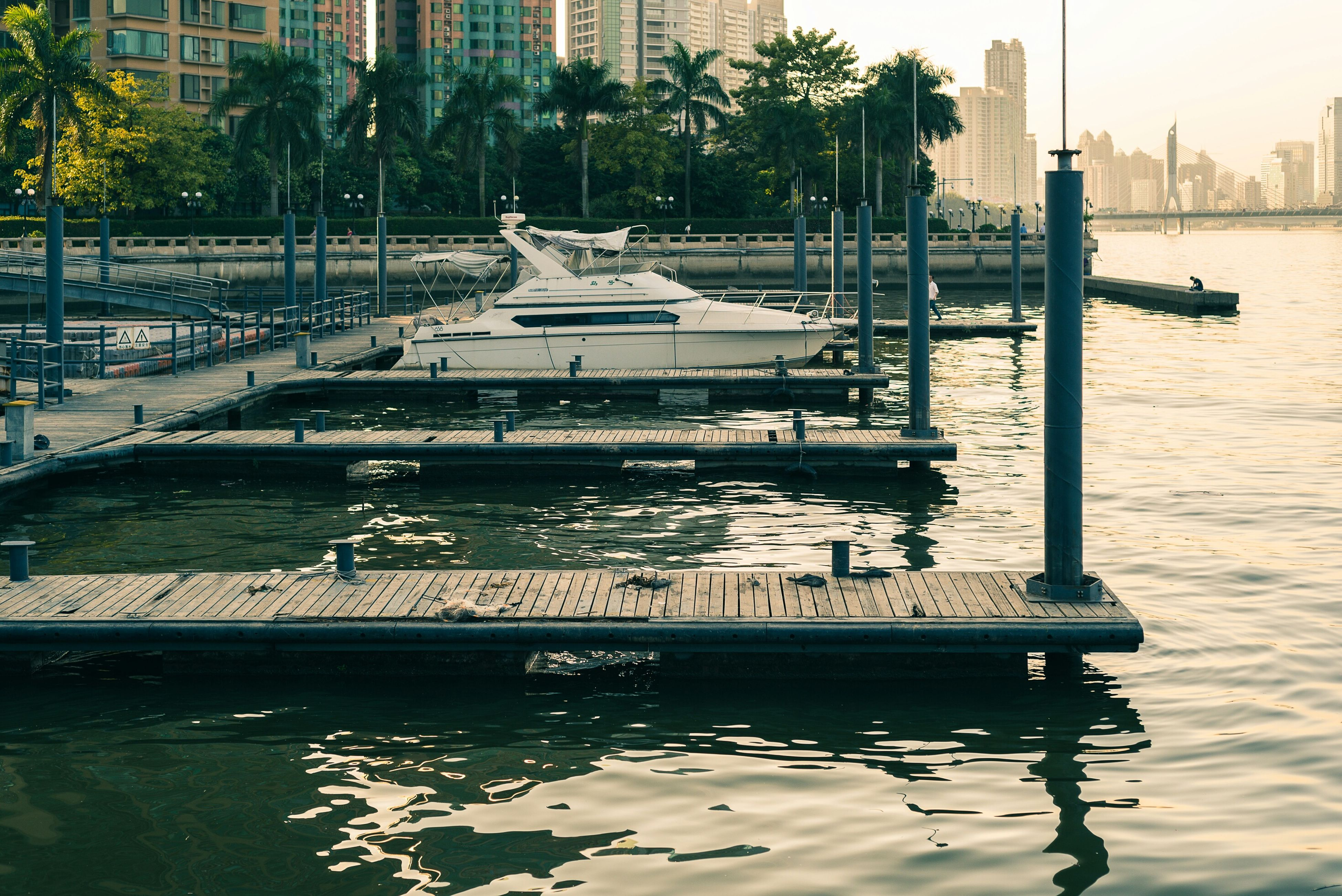 water, bird, building exterior, built structure, architecture, animal themes, city, animals in the wild, wildlife, tree, transportation, river, incidental people, reflection, waterfront, mode of transport, nautical vessel, day, outdoors