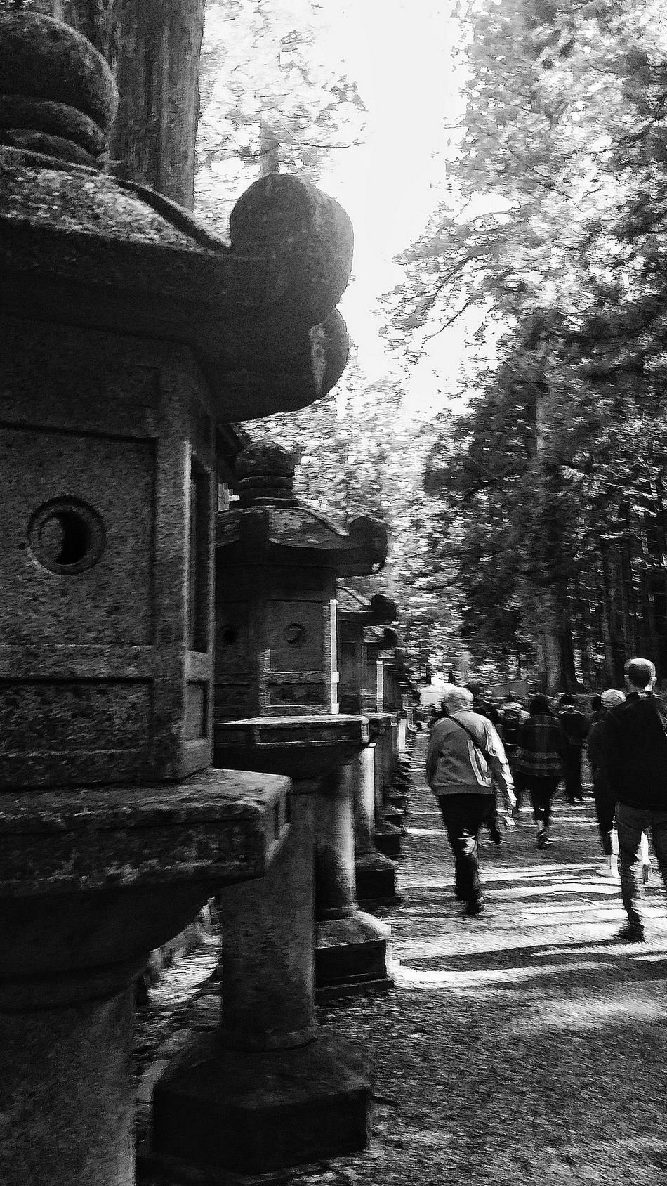 Stone Lanterns Lined Up Toshogu Shrine Nikko Tochigi Prefecture Autumn Japanautumn2015 Bnw Bnwphotography Bnwcollection Bnw_captures Bnw_japan Bnw_streetphotography Japan Travelphotography Streetphotography