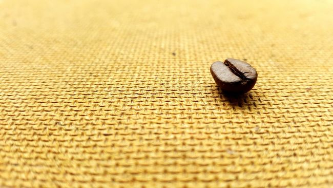Cafe Cafe Time Coffee Time Coffee Break Close-up Coffee Coffee Seeds Coffeetime