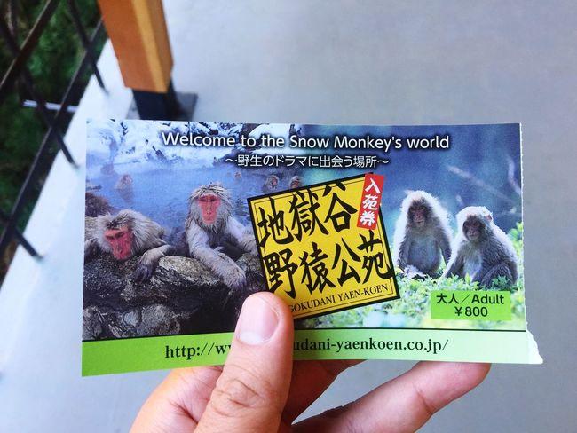 Text Human Hand Holding Monkey Snow Japan Ticket Paper Onsen