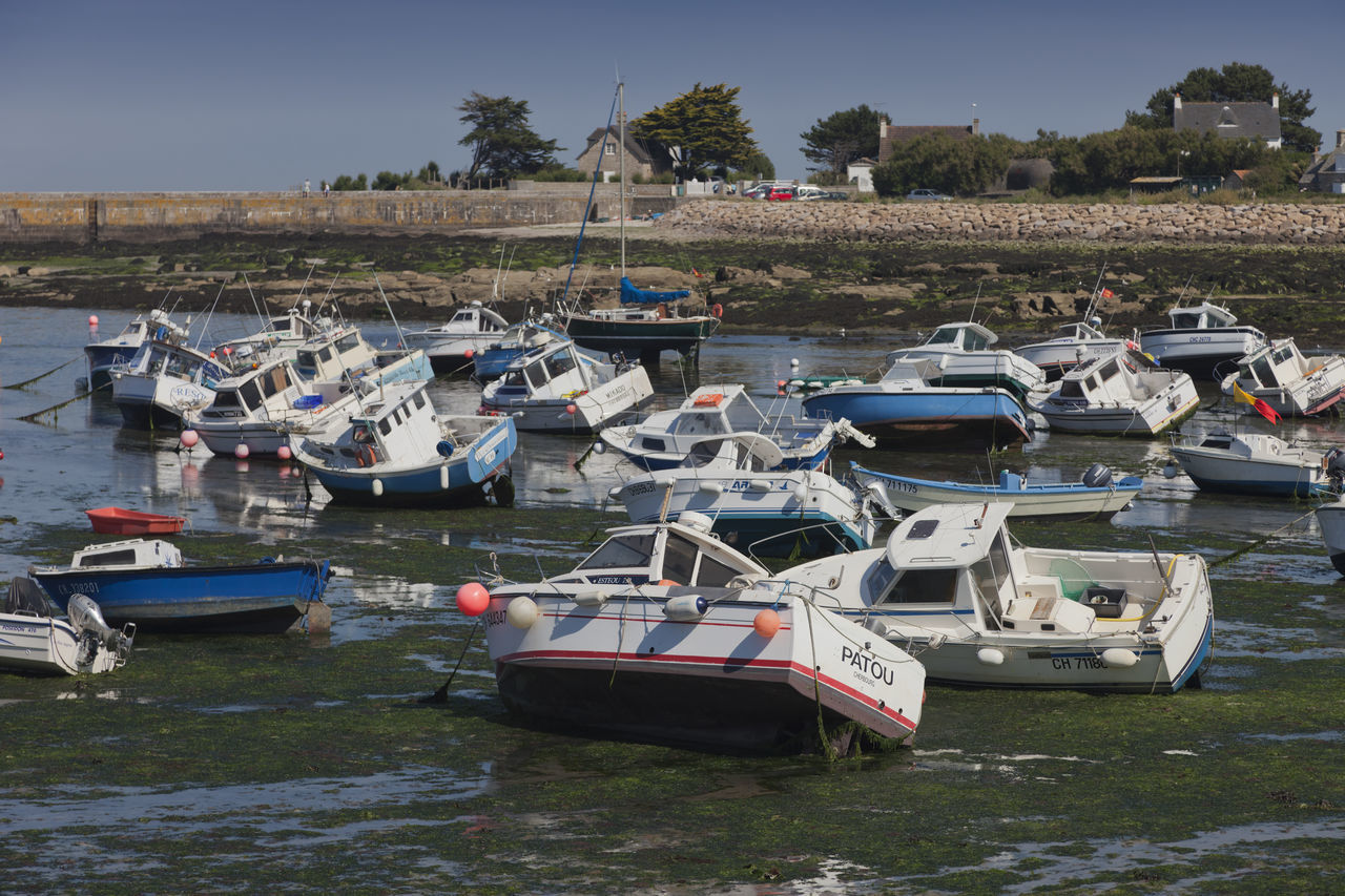Fishing and recreational boats at low tide in the harbor of Barfleur, France. Beauty Of Decay Boat Boats Coastline Damaged Decay Fishing Boat Harbor Harbor Lost Lostplaces Low Tide Marina Mode Of Transport Moored Nautical Vessel Old Pier Recreational Boat Sea Seaweed Stranded Tilt Transportation Water