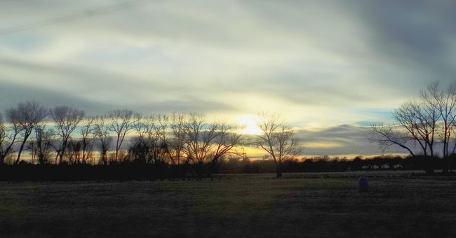 Farm Life Farmsunsets Farm Life Farm FarmPhotography Sunset Sunset_collection Best Of EyeEm Best Shots EyeEm 43 Golden Moments
