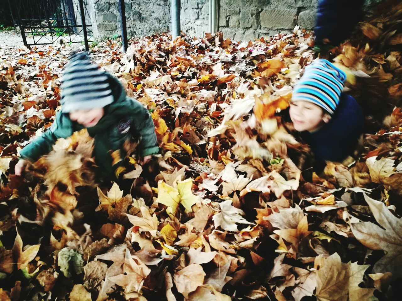 1,2,3 jump! Real People Autumn Day Outdoors Leaves🌿 Fun Kids Being Kids Kids At Play Kids Are Awesome Kids Having Fun Happy Fall Beauty Brown Leaves Yellow Leaves Warm Cloths Cold Day Leaf Nature Animal Themes Togetherness Motion Fragility Beauty In Nature