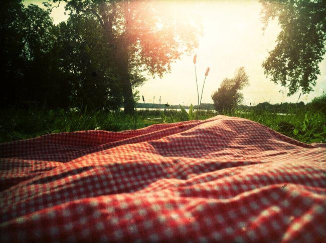 Picnicking Picnicking