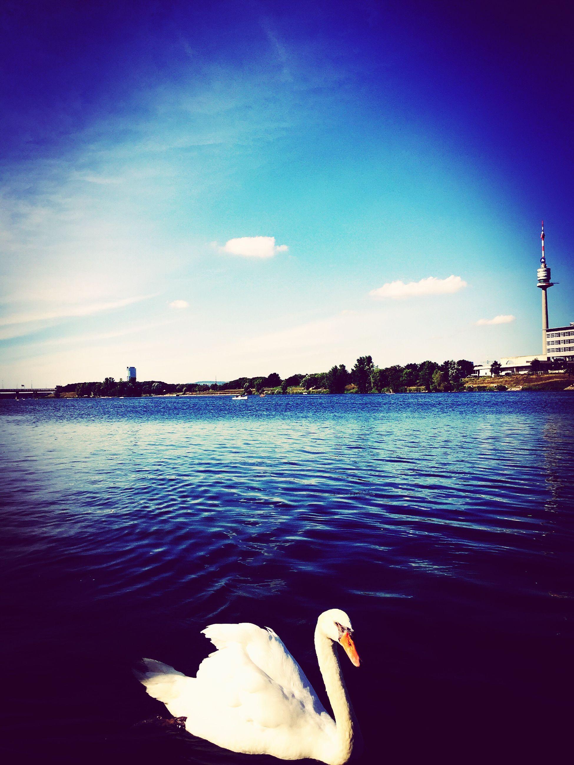 多瑙河 First Eyeem Photo
