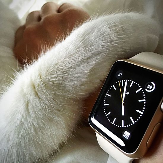 5 pm - it is paw time Cat Lovers Catsofinstagram EyeEmBestPics EyeEm Best Edits EyeEm Gallery EyeEm Cat Cats Of EyeEm EyeEm Best Shots EyeEm Animal Lover IWatch Applewatch Apple Watch Paws And Purrs Paws