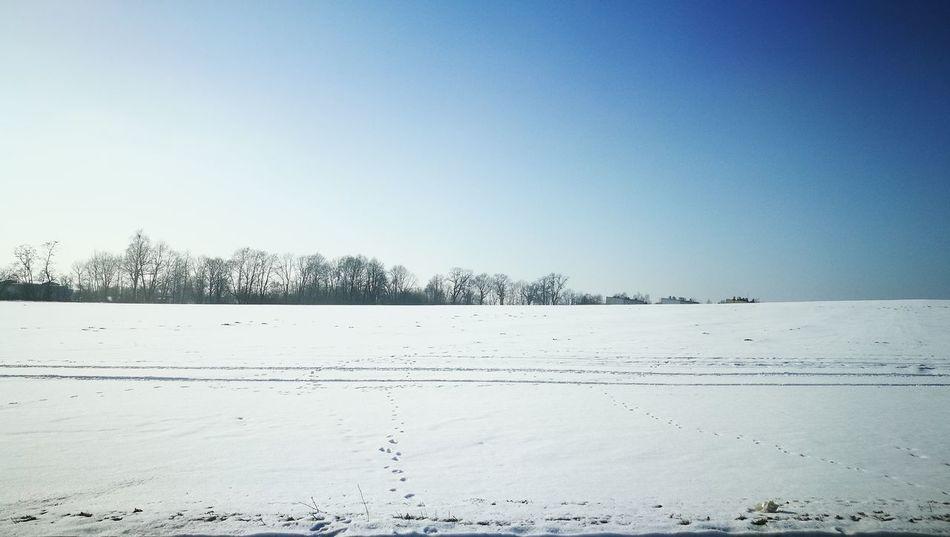 Zima, śnieg, niebo Nature Beauty In Nature First Eyeem Photo Day Sky