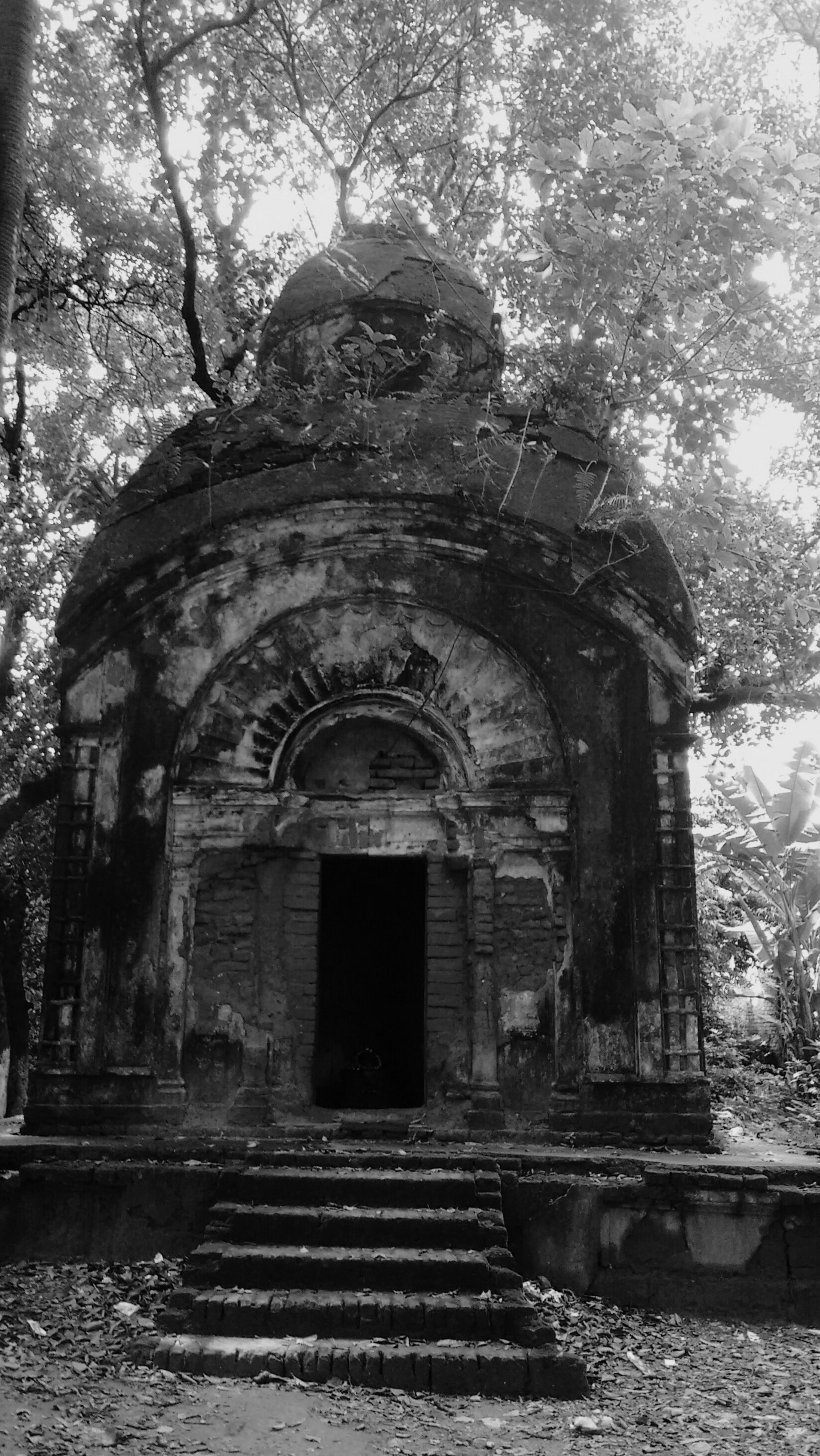 architecture, built structure, building exterior, arch, old, entrance, tree, door, abandoned, house, facade, day, low angle view, outdoors, history, weathered, place of worship, religion, window, damaged