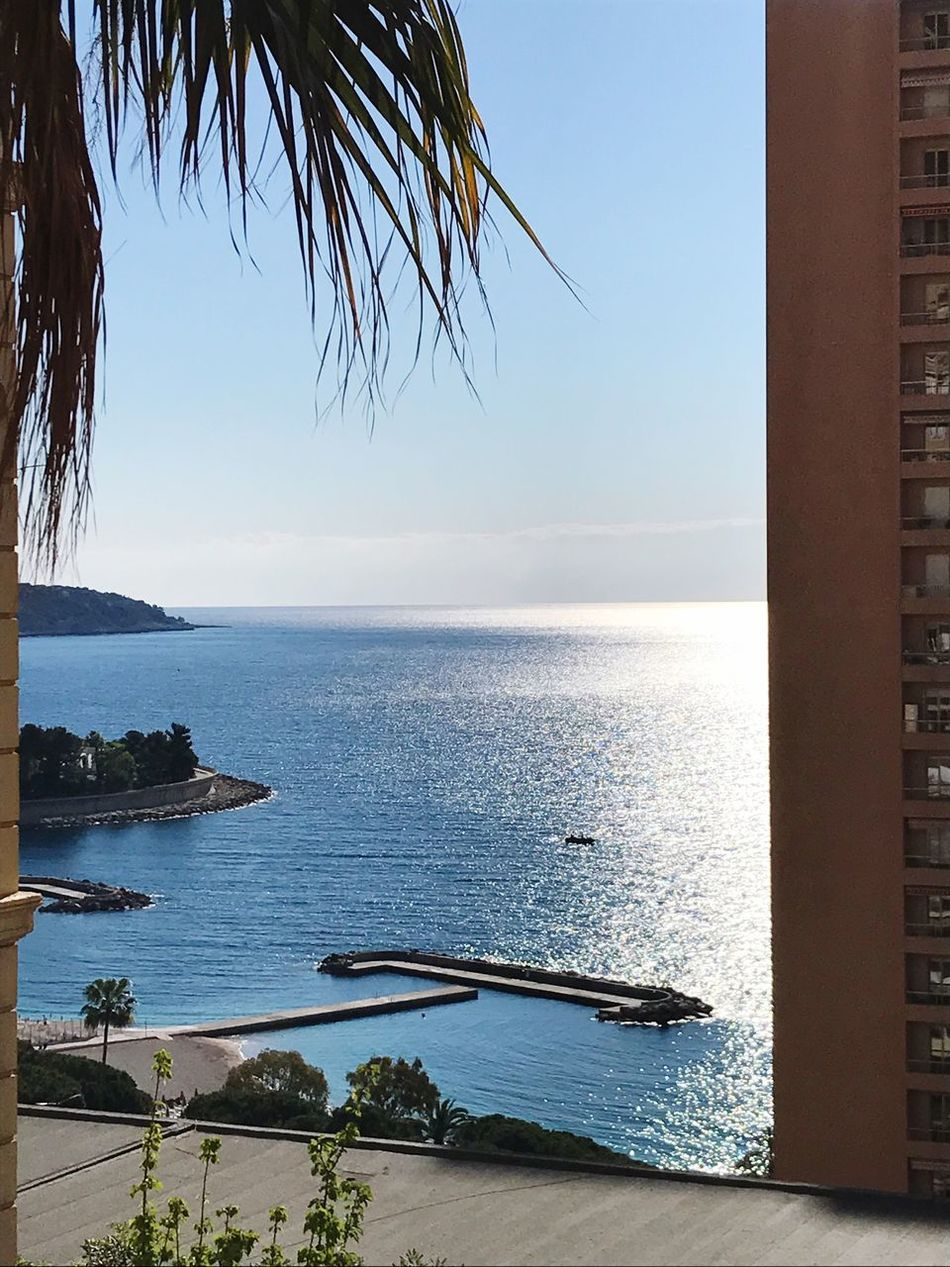 Sea Water Scenics Horizon Over Water Tranquil Scene Tranquility Beauty In Nature No People Clear Sky Beach Nature Palm Tree Outdoors Sky Day Blue Nautical Vessel Tree Monte Carlo Monaco Monaco French Riviera Mediterranean