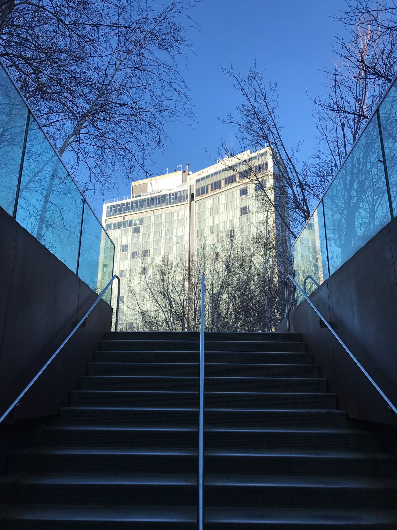 Low Angle View Building Exterior Built Structure Architecture No People Tree Bare Tree Day Clear Sky Outdoors City Sky Nature New York City High Line Park