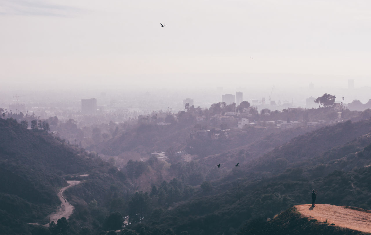 Aerial View Canyon City Day Flying Hike Hollywood Hollywood Hills Hollywood Sign Landscape Morning Nature Outdoors Sky Smog Travel Destinations Tree Urban Skyline