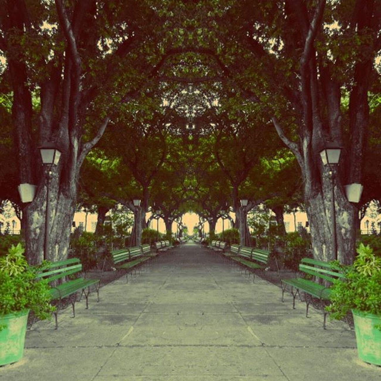 😄 Loosemag Looseart Photography Instagram Instagrambrasil Mirror Fotomissao Amigersbr Dnfotografia Urbanandstreet