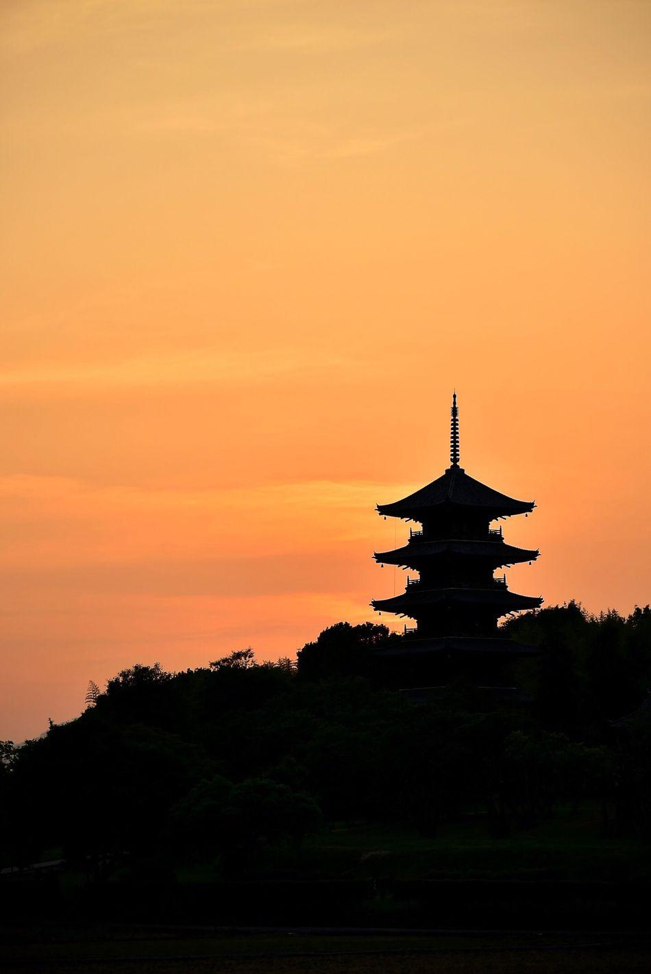 Okayama Nikon EyeEm Japan EyeEm Best Edits Taking Photos EyeEm Best Shots Landscape Five-storied Pagoda 備中国分寺 五重塔 Sunset Temple Evening View