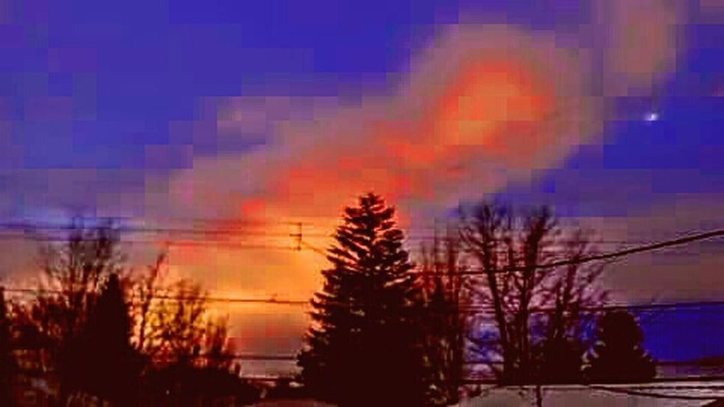 Taking Photos Inlandempire Home Town Spokane Wa Trees And Sky Tree Porn Enjoying Life Tree_collection  Tree Silhouettes Colorful Sky Salmon Colored Warm Sunset Pink Sunset Sunset_collection Sunset Silhouettes Lit Up My Life Have A Wonderful Day Everyone