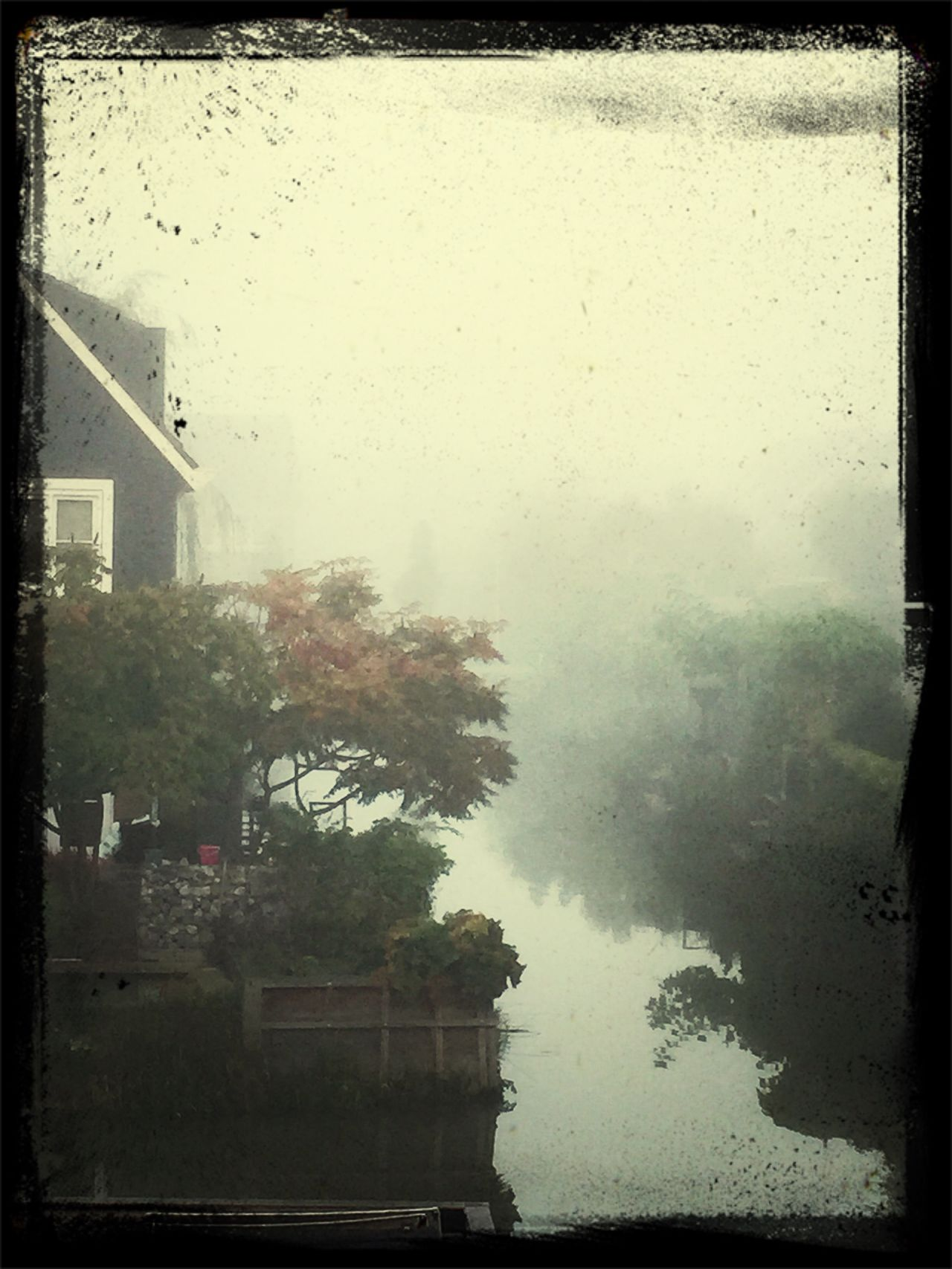 Misty Morning Nature Water EyeEm Nature Lover