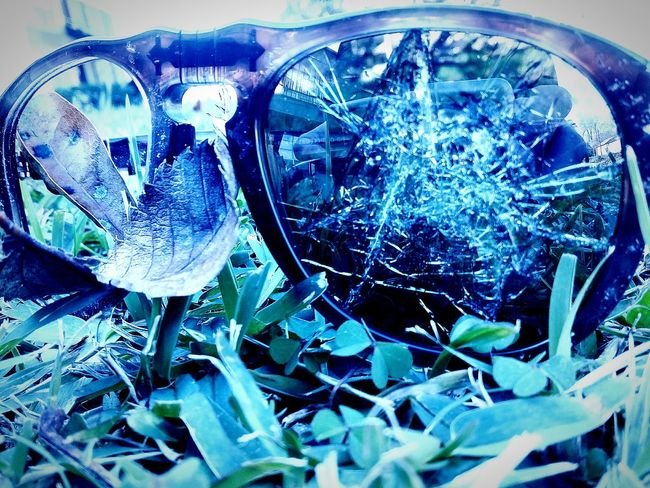 Hanging Out Taking Photos Check This Out Broken Glasses Enjoying Life Grass Blades Sunglasses Macro_collection Macro Photography Macro Week EyeEm Gallery Eyeemphotography Showcase: January Macro Beauty Showcase : January Reflection_collection The Great Outdoors With Adobe