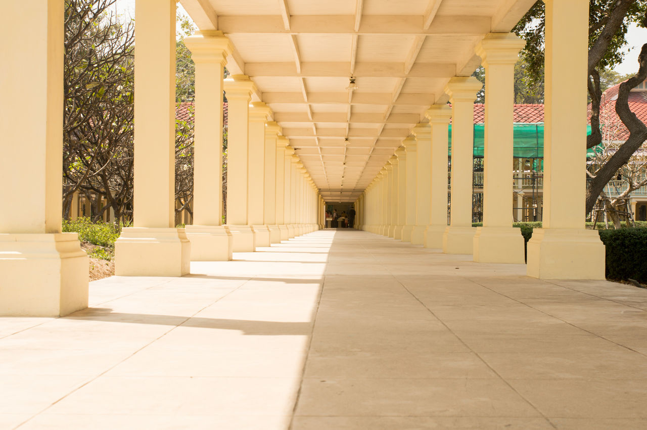 the way forward, architecture, empty, corridor, architectural column, built structure, no people, indoors, pillar, day