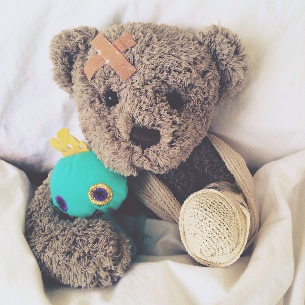 Beautiful stock photos of teddy bear, Bad Condition, Bandage, Childhood, Damaged