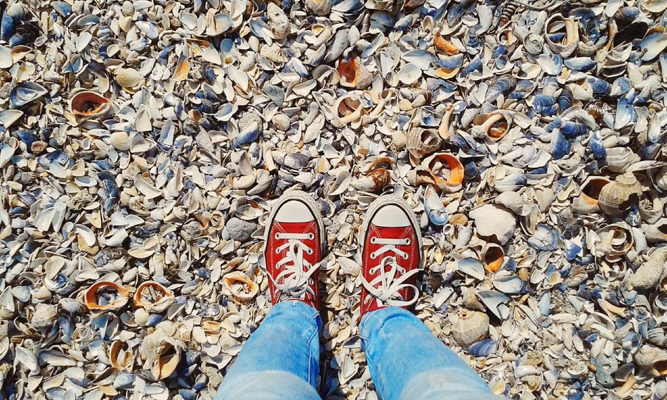 Converse Converse Love Red Converse Shells Beach Randomshot Olimp Red Colorsplash Taking Photos