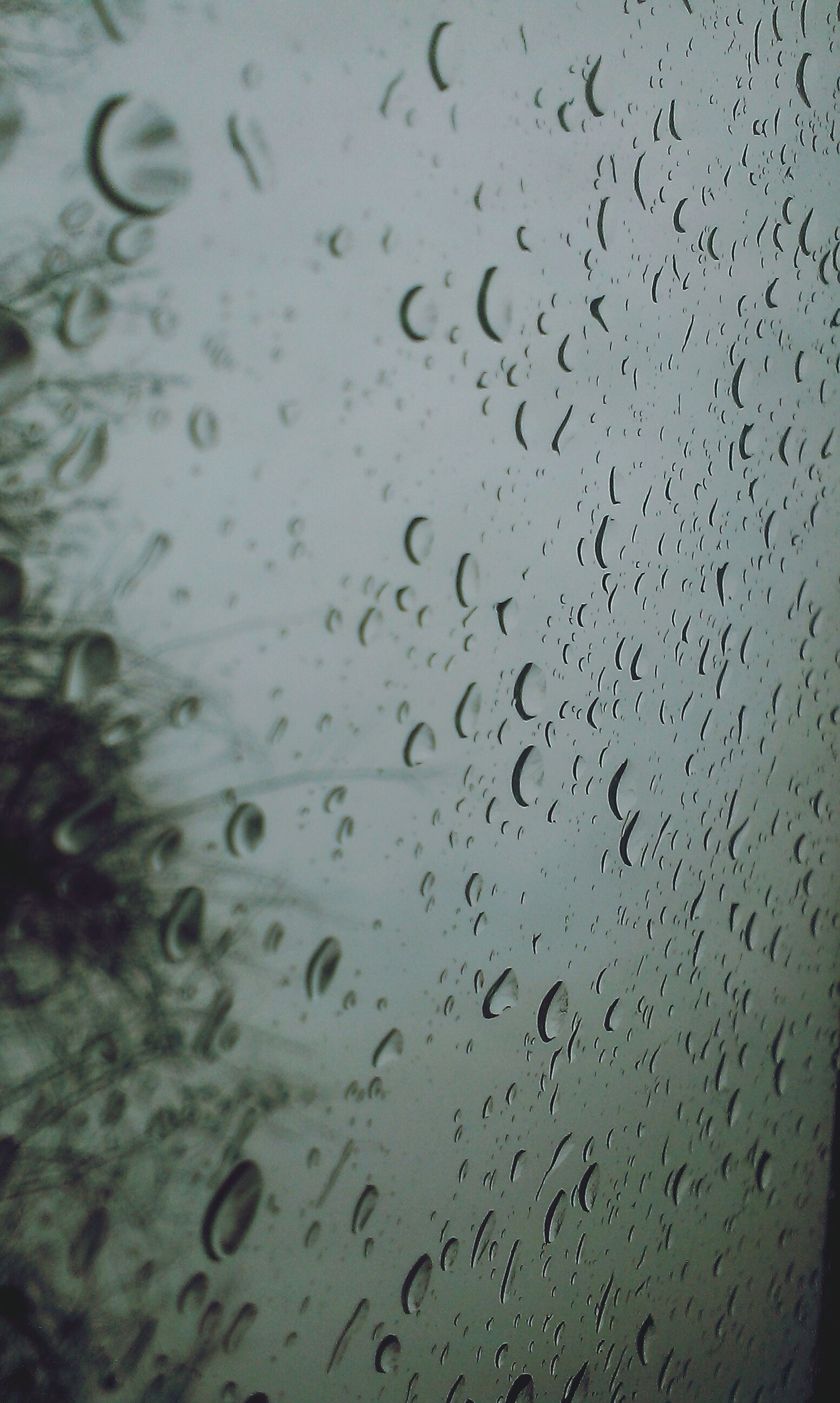 drop, wet, window, water, indoors, transparent, glass - material, rain, full frame, backgrounds, raindrop, weather, glass, season, close-up, focus on foreground, sky, no people, day, nature