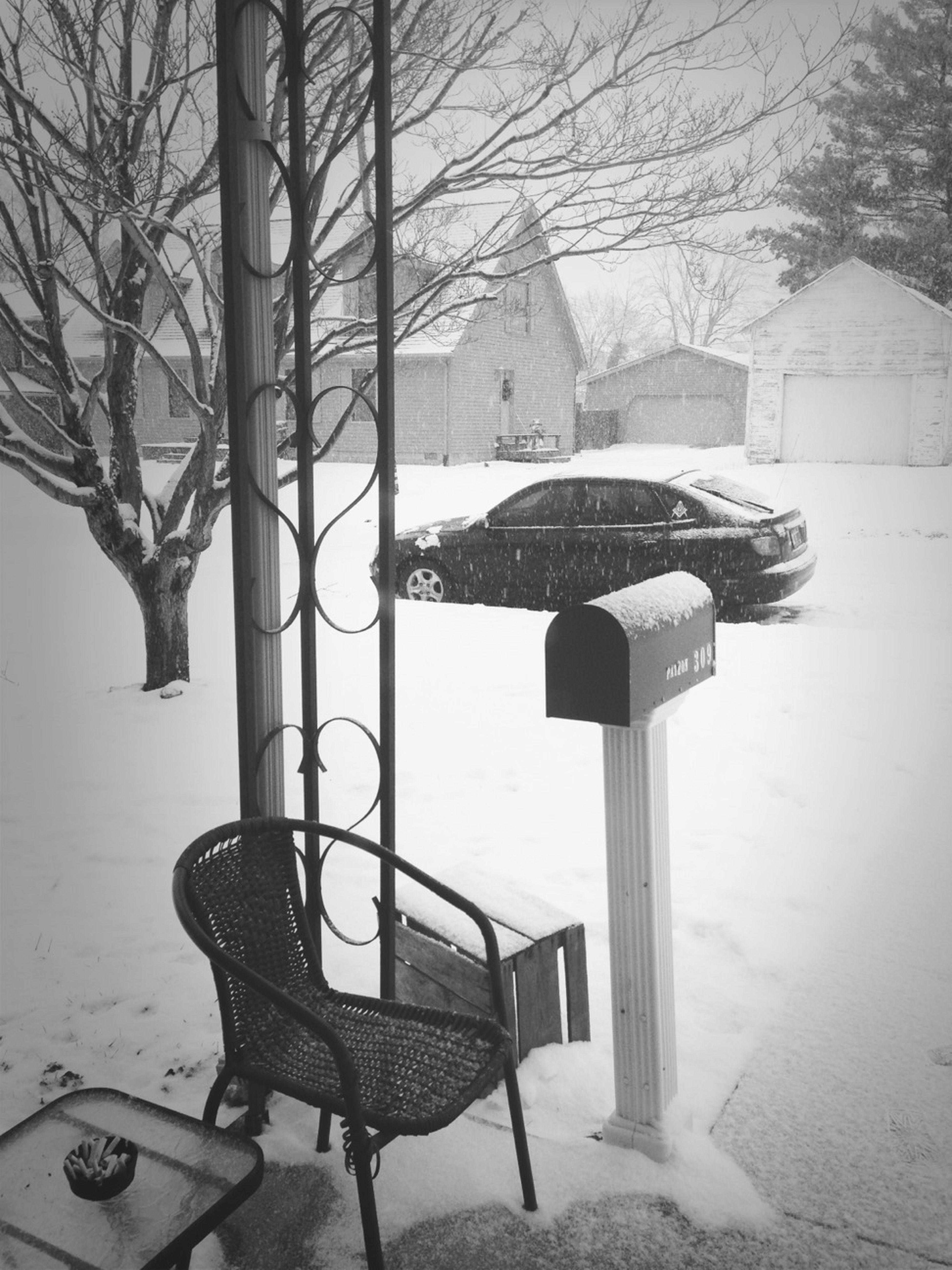Loving This Snow