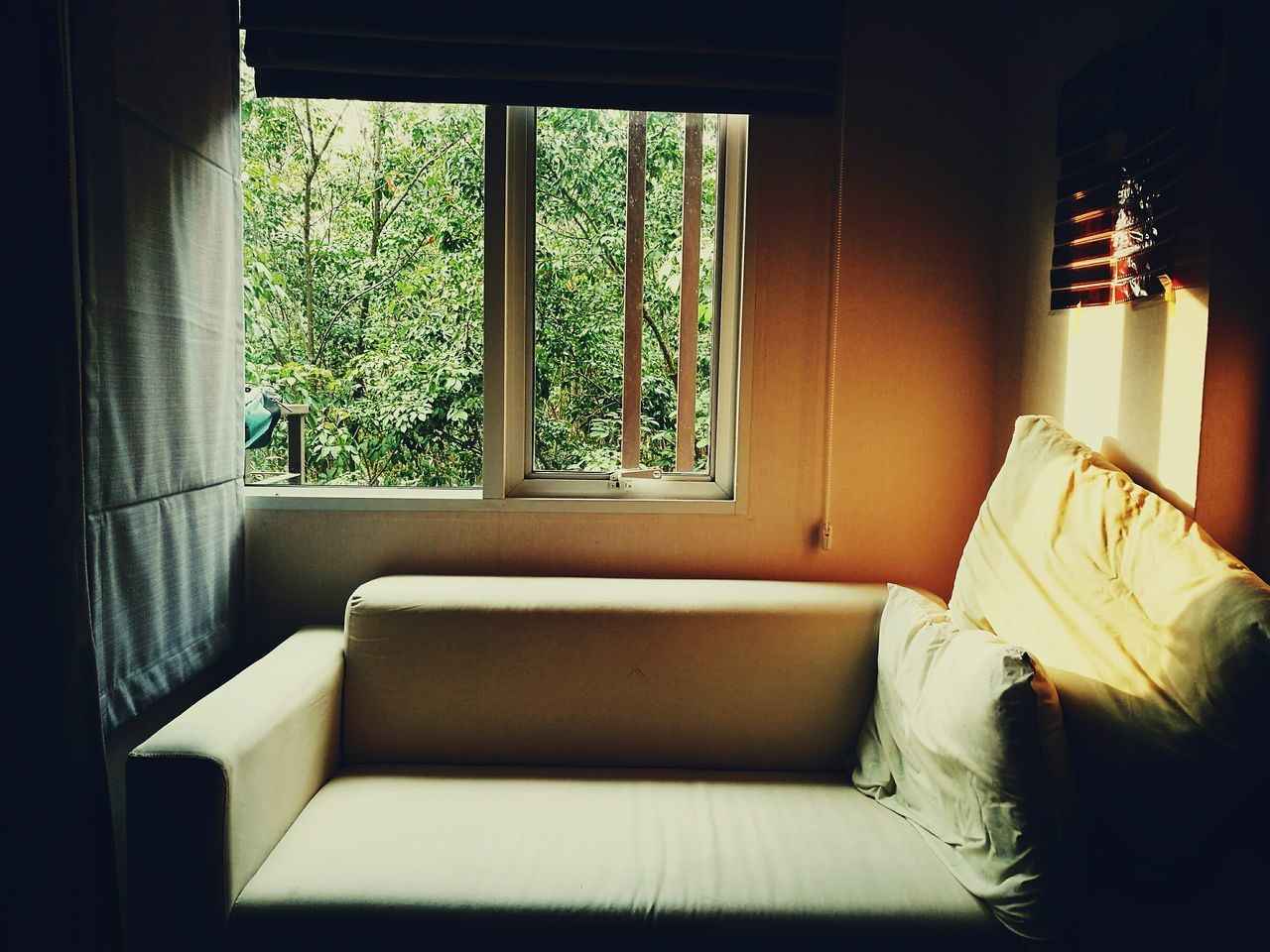 Window Indoors  Luxury Home Interior Day Bedroom No People Sofa Sofatime HuaweiP9Photography Huaweiphotography DualCamera Leicacamera Colour Of Life Eyeemphoto Eyemphotography Lightoflife Lifestyles EyeEm Nature Lover Indoors  Backgrounds Full Frame Nature_collection Inthemoment Intheroom
