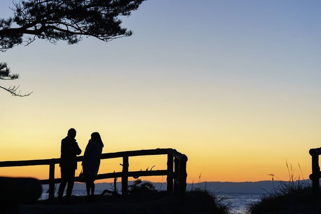 Japan Evening Red Sky At Sunset Hayama SONY A7ii Japan Photos EyeEm Gallery EyeEm Best Shots - Sunsets + Sunrise Two Lovers Point Kanagawa,japan Japanese  Island Cloud And Sky Sea And Sky Sunset_collection Sea View Seaside Islands Shadows & Lights Shadow And Light EyeEm Best Shots Pinetrees Wodden Frame 葉山
