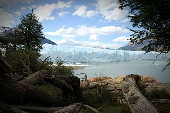 Perito Moreno Nature_collection Patagonia Patagonia Argentina Patagonia! Nature Perito Moreno. Patagonia. Argentina. PeritoMoreno