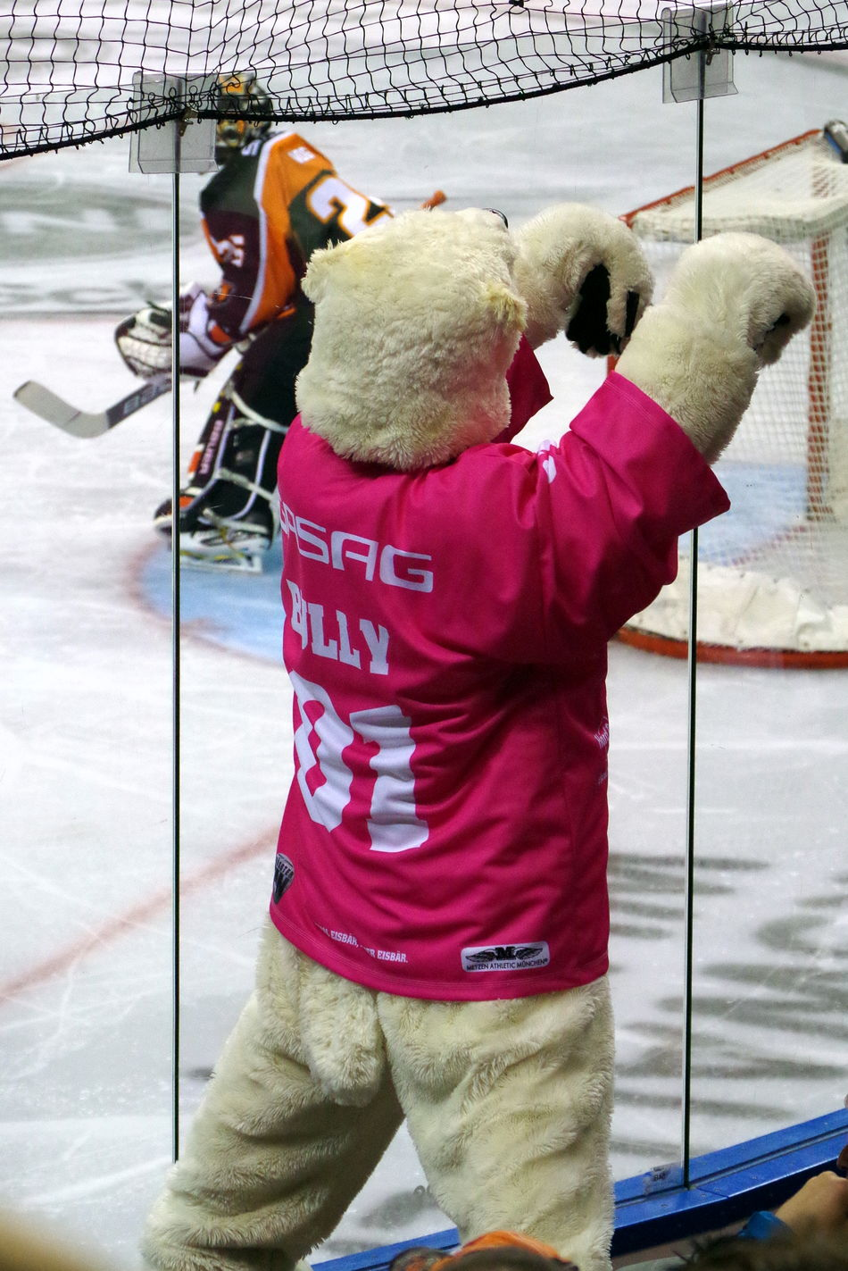 Anfeuern ... Berlin Chance Encounters Eisbär Eisbären Berlin Eishockey Ice Hockey Icebear School Of Photography Sport Standing Stehen Millennial Pink