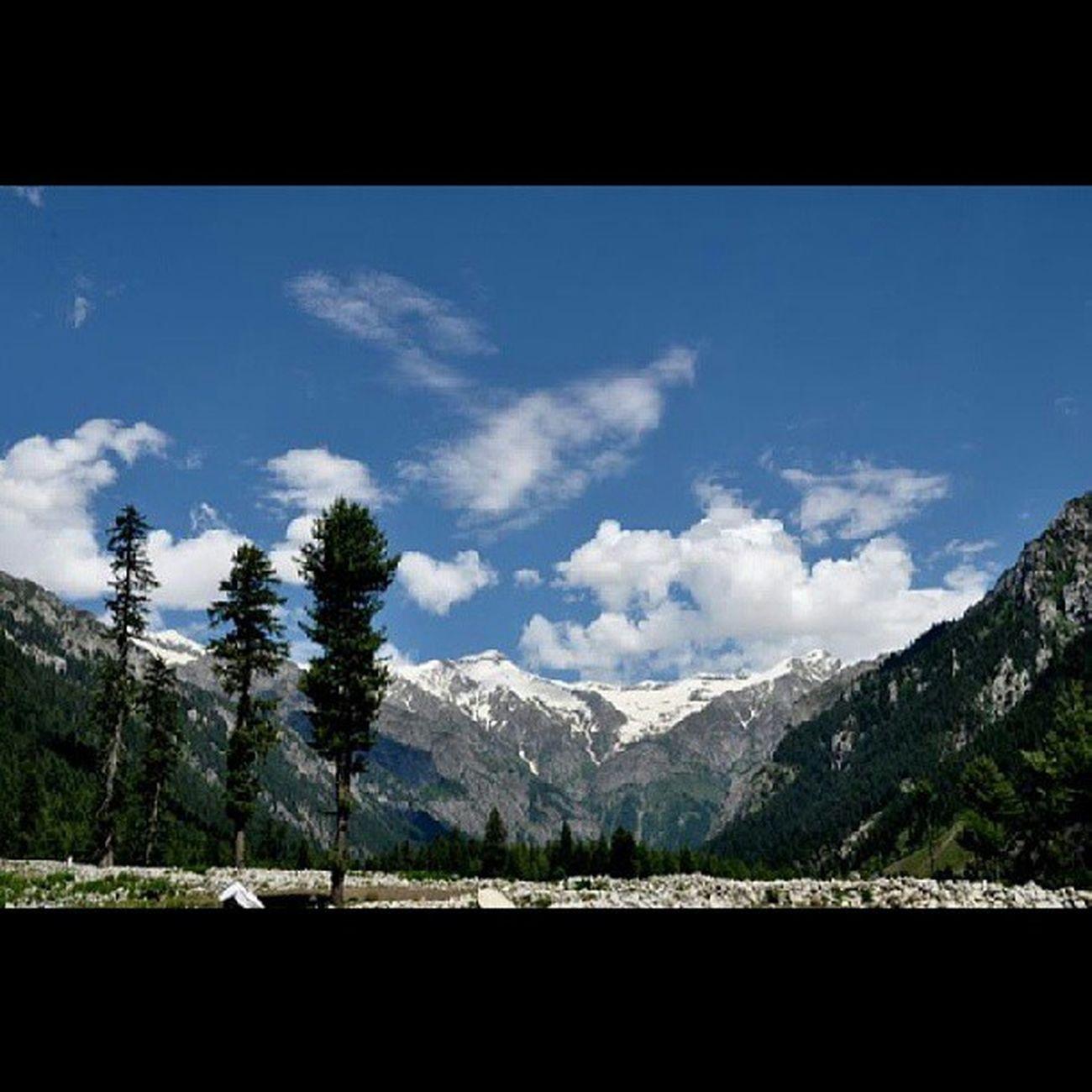 Breath taking KumratValley Dir Kp Pakistan Adventure Amazing Trees SummerChill Walk