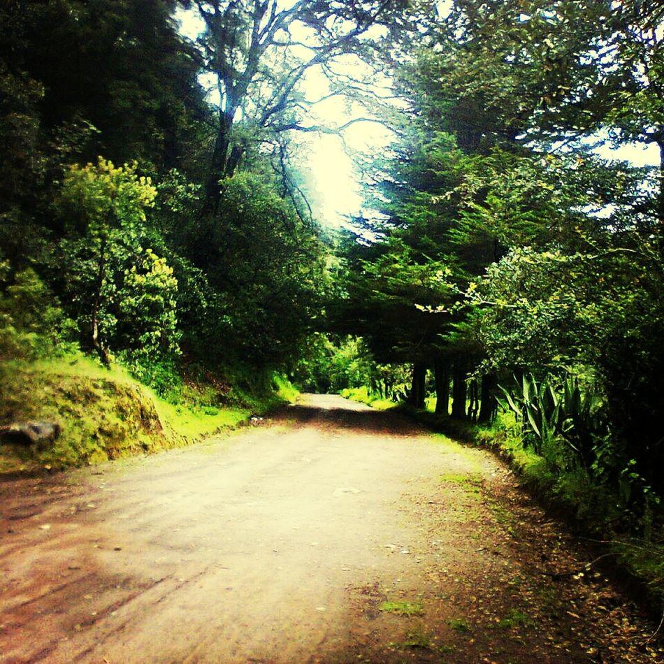 Naturaleza Natural Beauty Hello World Love <3 Naturally