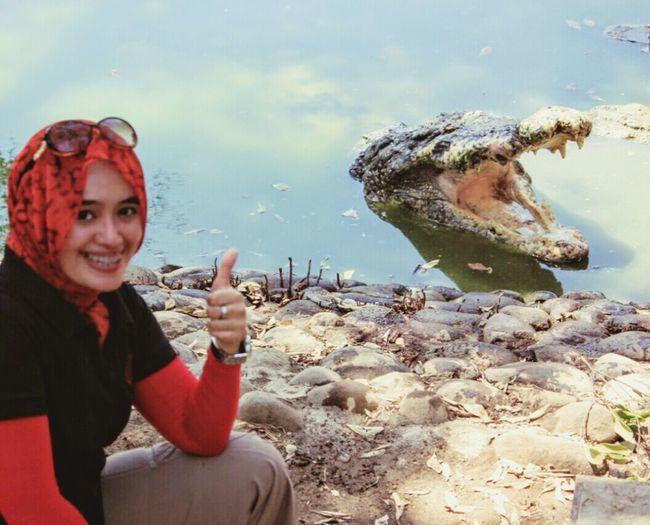 Q Quircky Crocodiles Crocodylus Porosus Crocodilesfarm That's Me Westjava INDONESIA