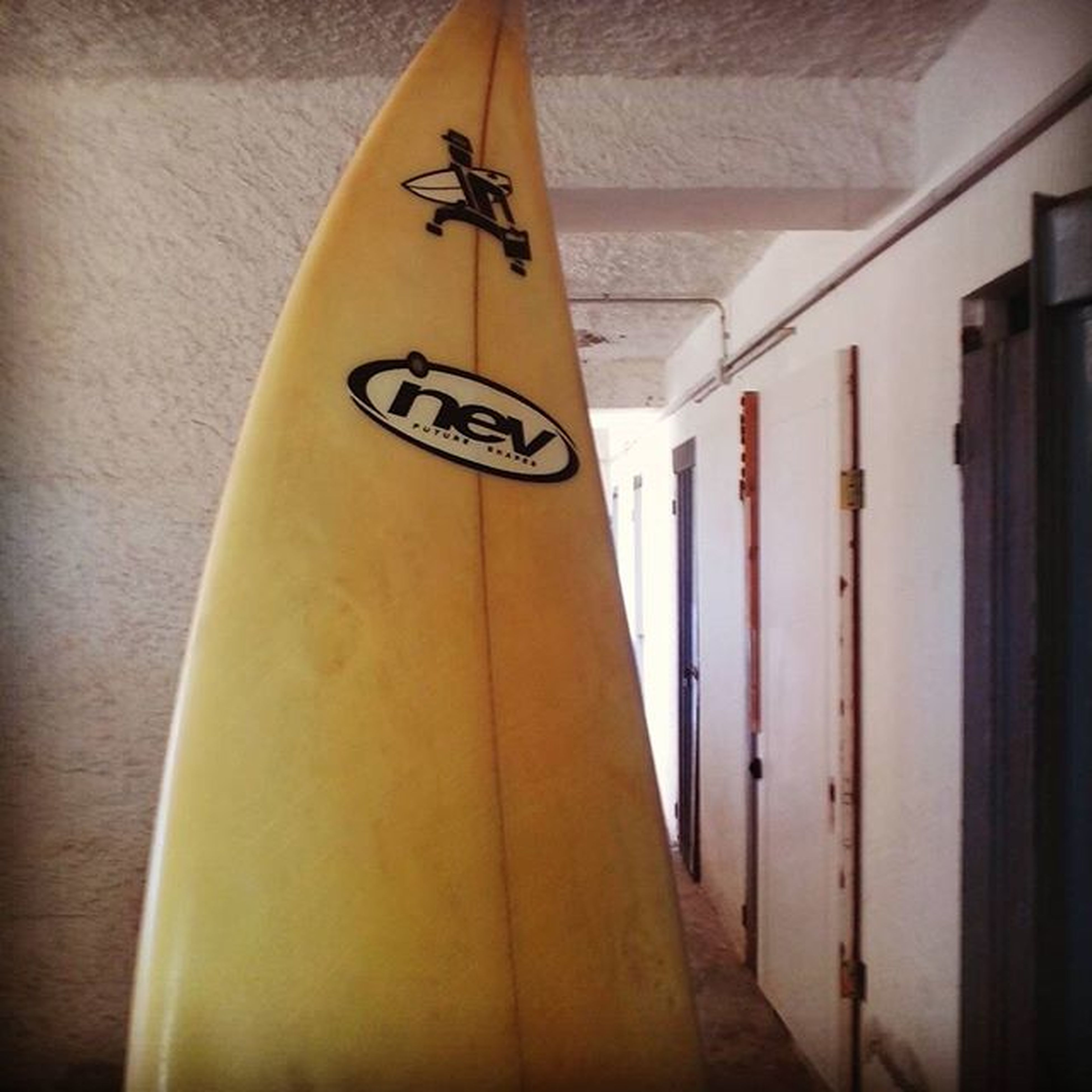 Lei si che mi capisce Surfproject Surfing Surferlife Wave Sea Lovethemoment Alldayatthebeach Summersession Everywhere Arethewave Imustbecrazy Like Picoftheday