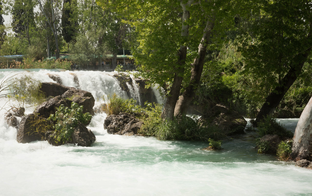 Tarsus Waterfall Beauty In Nature Boulders Day Flowing Water Motion Nature Outdoors Raging Water River Rocks And Water Running Waterfall Running Waters Scenics Tarsus Tarsus Waterfall Tarsus Şelalesi Tarsus, Turkey, Waterfall, South, Tranquil Scene Tree Trees Turkey Vegetation Water Waterfall Whitewater