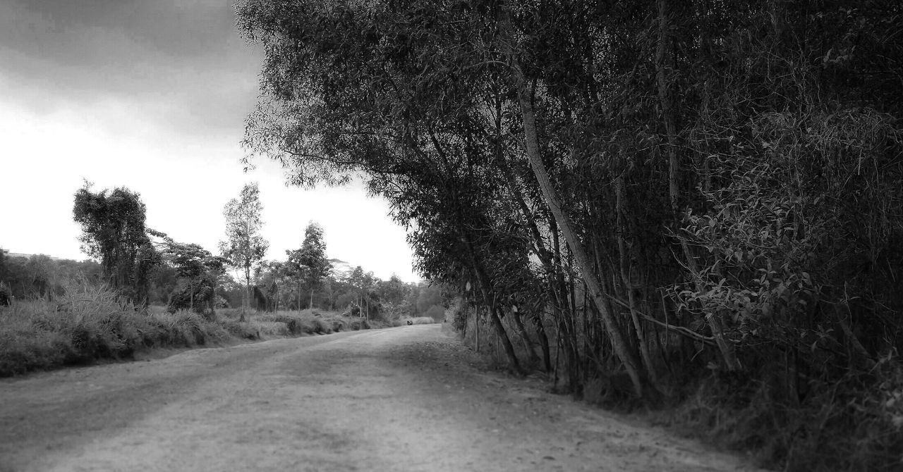 The road back home. Road Outdoors Non-urban Scene Nature Black And White Photography Tranquil Scene Pathways