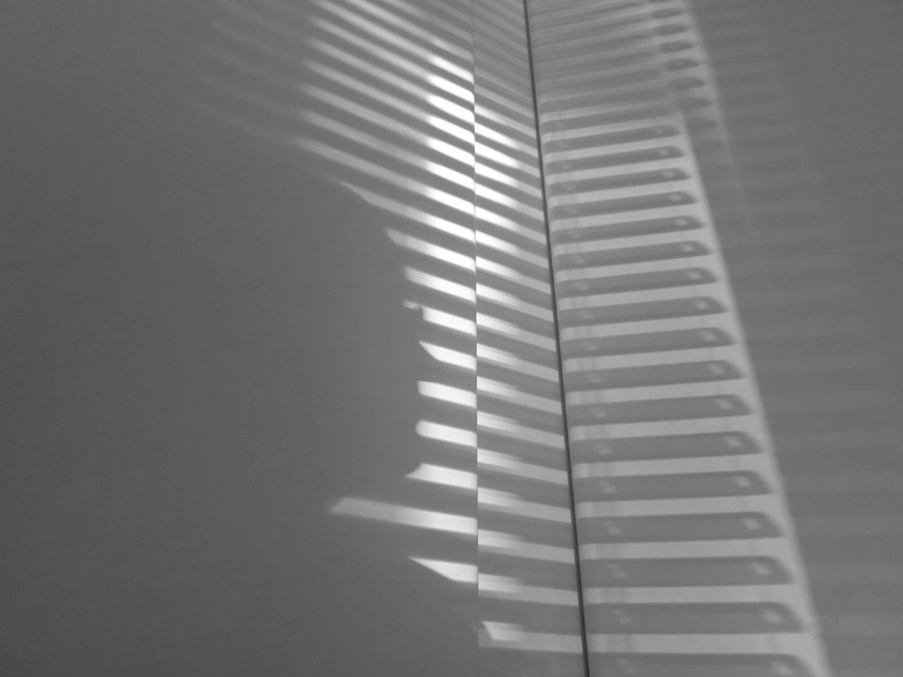 Shadow Of Person And Blinds On White Wall