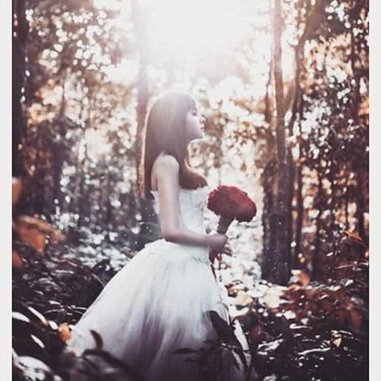"""Em thật sự khao khát được gặp anh. Em thật sự cầu mong sẽ được gặp anh như trong giấc mơ và như ngày xưa. muốn gặp anh không chỉ vì nhớ không chỉ vì yêu anh... mà chỉ đơn thuần muốn cho anh biết """"em đã từng yêu anh từ rất lâu rồi. Anh là mối tình đầu của em đấy và cho dù hiện tại như thế nào đi chăng nữa em vẫn yêu anh thật âm thầm và lặng lẽ. Cảm ơn anh vì tất cả!!! Chỉ là giá như anh có thể biết rằng tình yêu ấy với em to lớn như thế nào nó giúp em biết về cuộc sống này nhiều biết bao giúp cho con tim em vững chắc hơn rất nhiều. Chỉ là... em cứ mãi nhìn về anh dù thấy và cảm nhận được tình cảm hay rung động với trăm nghìn người con trai... nhưng em không dám chắc không dám thử hay chỉ thanh minh cho những thứ rung độnh rối rích đó là SẼ CHẲNG BẰNG ĐƯỢC NHƯ ANH ĐÂU"""" Send My First Love  I Love You So Much You're Always On My Mind Thank You ♡♡♡ Bright You Come My Life Vlvt 05.10.09"""