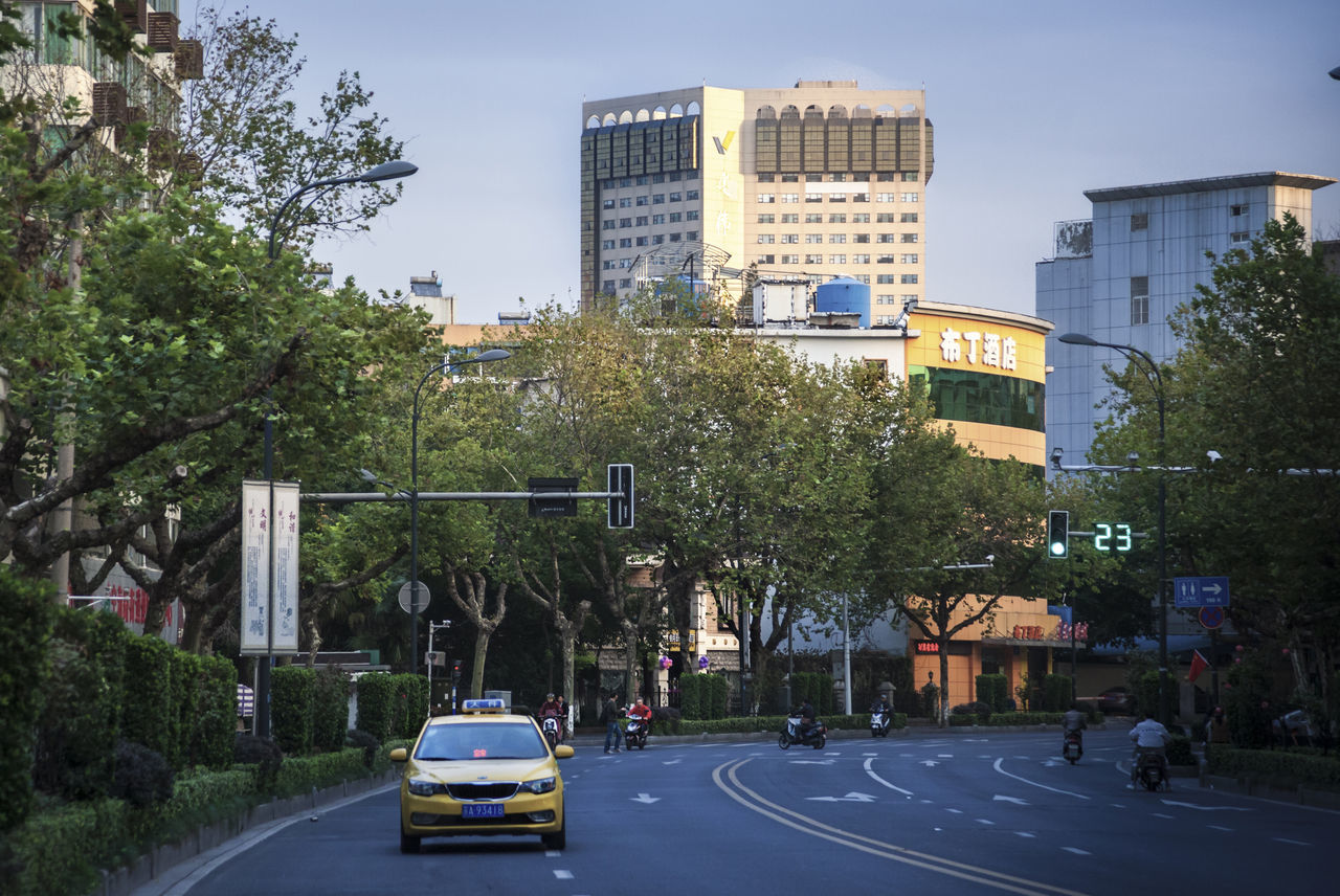 The early morning of Nanjing Architecture Building Exterior Built Structure Car City City Bulings City Life City Street City Street Photography City Streets  City Streets View Day Green Color Outdoors Road Sky The Early Morning Tranquil Scene Tree