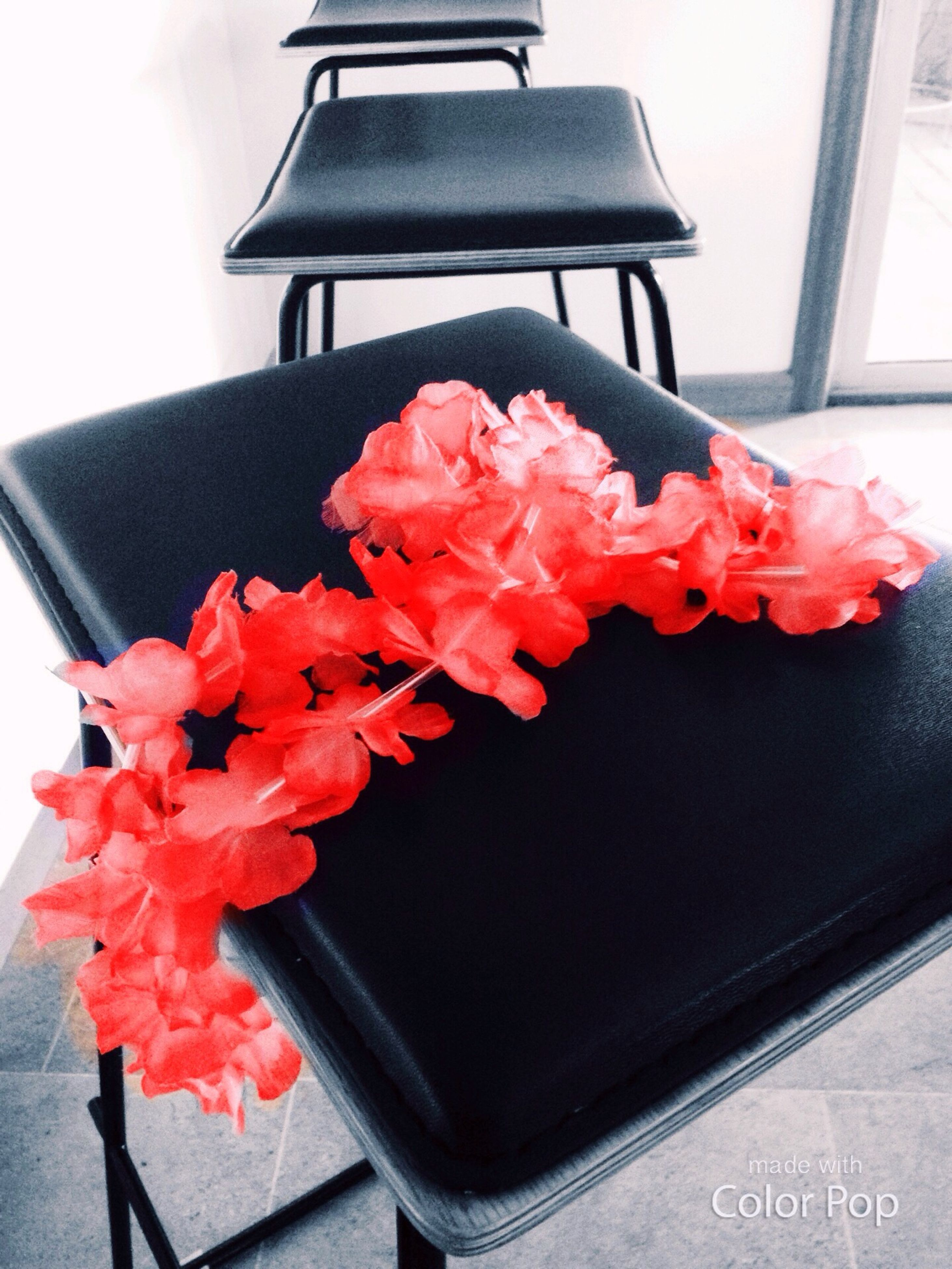 red, flower, close-up, indoors, gift, no people, fragility, flower head, freshness, day